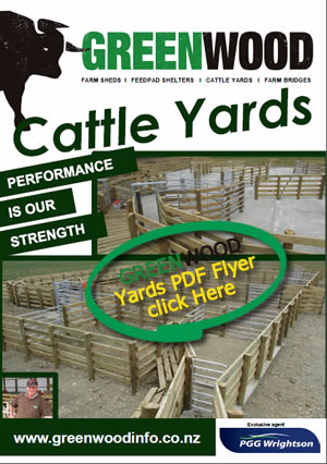 Yards Flyer