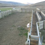 Large Farm Yards
