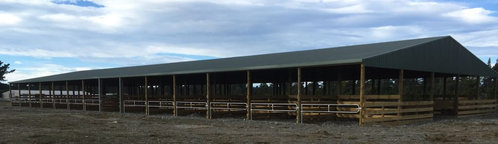 Large Covered Cattle Yard